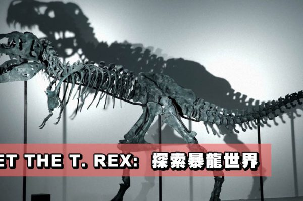 MEET THE T. REX:  探索暴龍世界